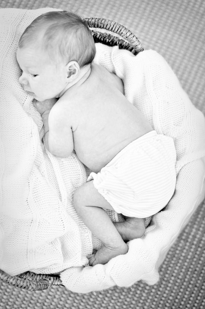 Matthew newborn 44a